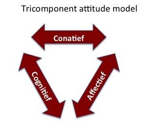 Tricomponent attitude model CKC
