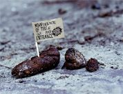 Klassieke Guerrilla Actie voor Hans Brinker Hotel, door KesselsKramer. Bron: http://www.deondernemer.nl/economie/150999/Wij-willen-ook-wel-zon-drol.html