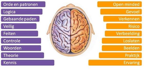 Lenker hersenhelft, en de rechter (bron: http://xuchiejlala.blogspot.nl/2013/01/schrijven-rechterhersenhelft-versus.html)
