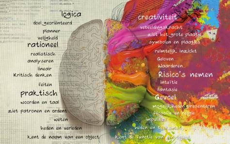 Rechter hersenhelft en de linker. (bron: http://godisha.blogspot.nl/2014/03/vipassana-een-reis-far-beyond.html)