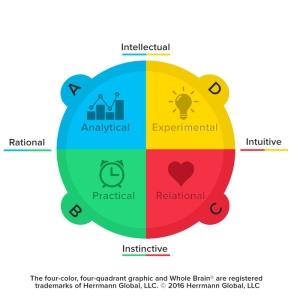 whole-brain-model-2016